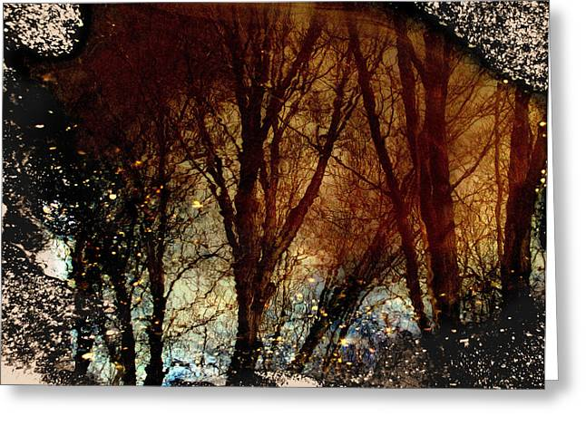 Natures Looking Glass 3 Greeting Card