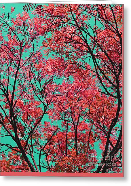 Greeting Card featuring the photograph Natures Magic - Fire Red by Rebecca Harman
