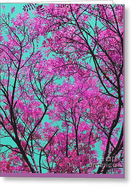 Greeting Card featuring the photograph Natures Magic - Pink And Blue by Rebecca Harman