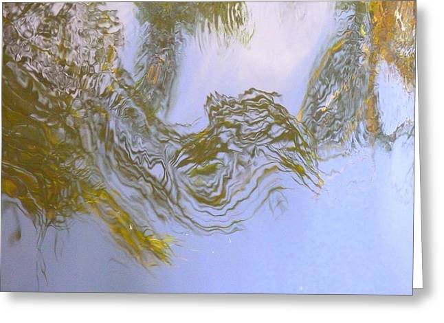 Natures Mirror Greeting Card by Florene Welebny