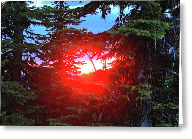 Nature's Portal Greeting Card by Dave Hampton Photography