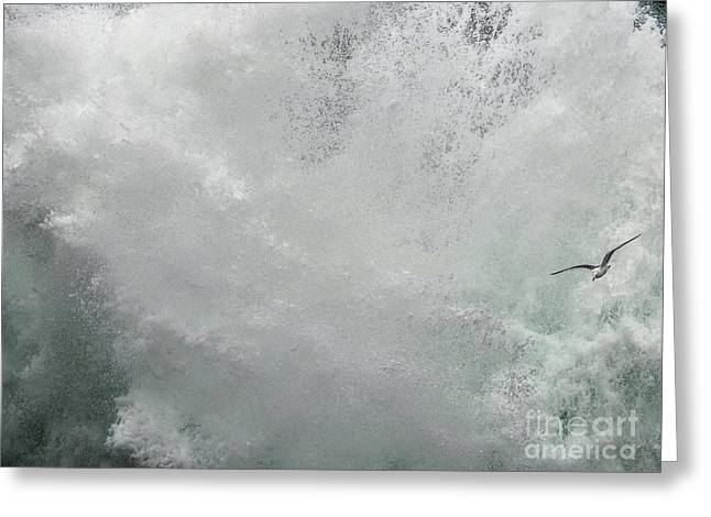 Greeting Card featuring the photograph Nature's Power by Peggy Hughes