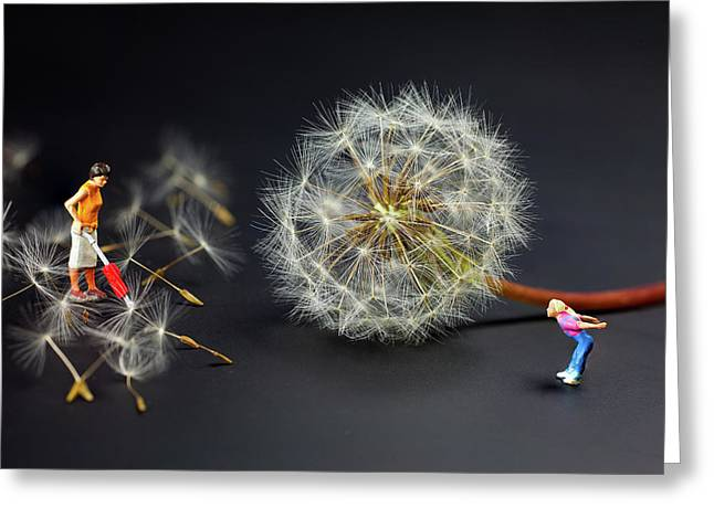Greeting Card featuring the painting Naughty Girl Playing Dandelion Little People Big World by Paul Ge