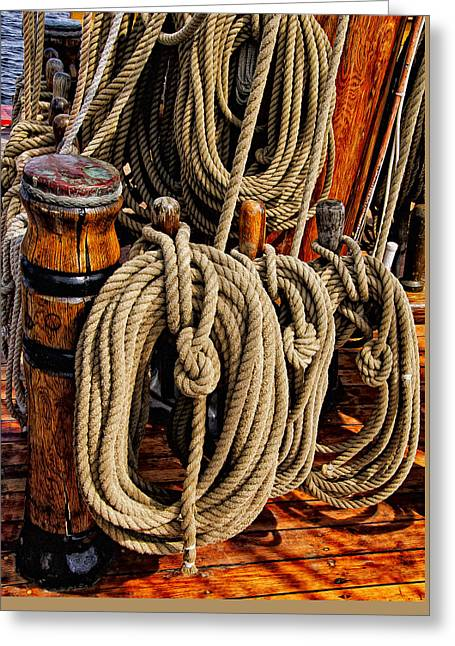 Nautical Knots 17 Oil Greeting Card