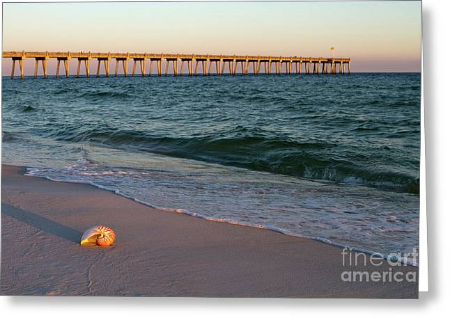Nautilus And Pier Greeting Card