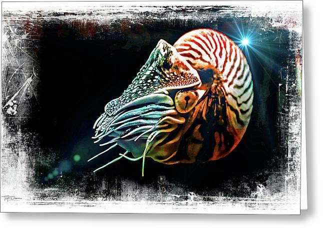 Nautilus Dreams Greeting Card