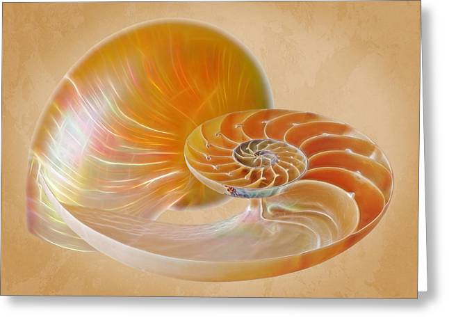 Nautilus Golden Glow Greeting Card by Gill Billington