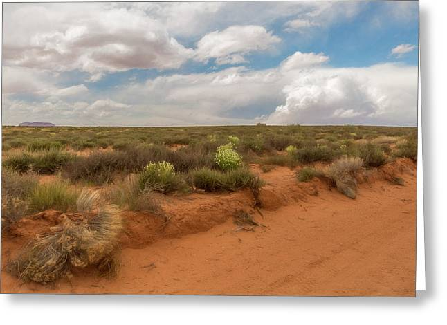 Navajo Reservation Greeting Card