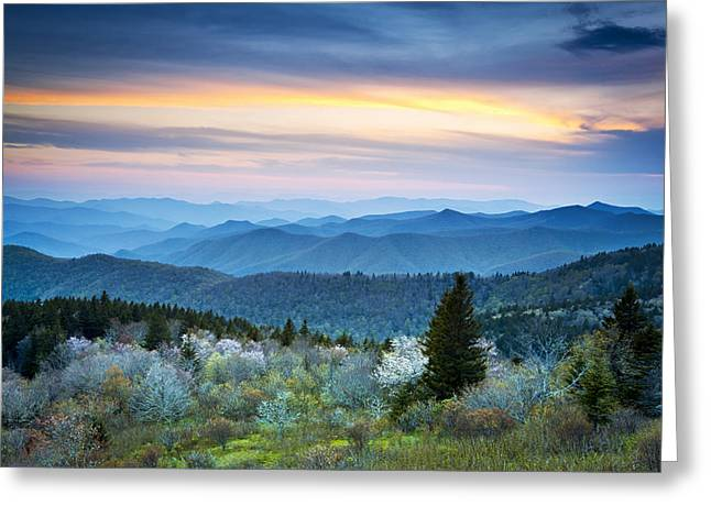 Western North Carolina Greeting Cards - NC Blue Ridge Parkway Landscape in Spring - Blue Hour Blossoms Greeting Card by Dave Allen