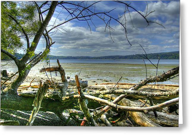 Near Port Gamble Greeting Card