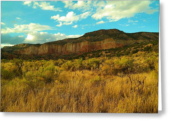 Near The Chama River New Mexico Greeting Card by Jeff Swan
