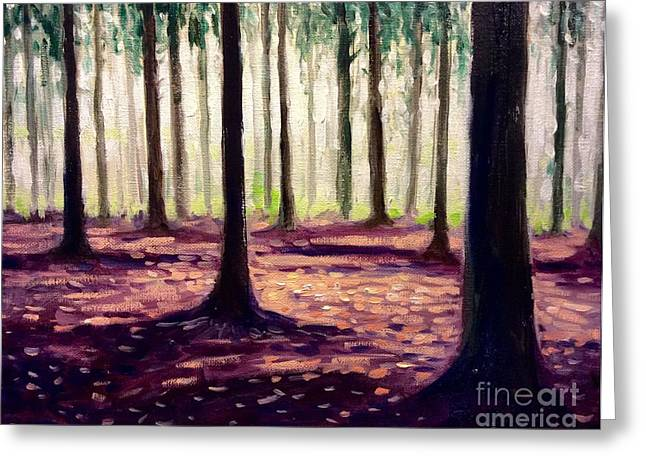 Nearly Winter Forest Up North Greeting Card