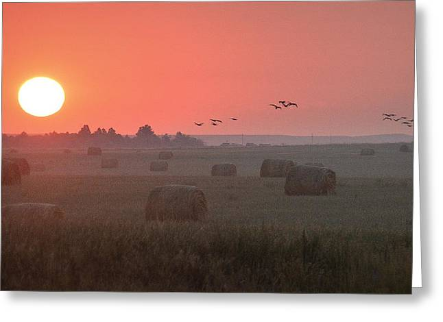 Greeting Card featuring the photograph Nebraska Mornings.. by Al Swasey