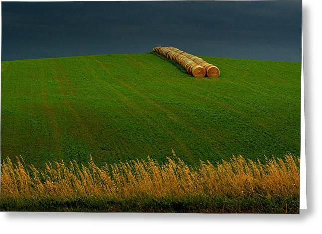 Greeting Card featuring the photograph Nebraska Rainy Day by Al Swasey