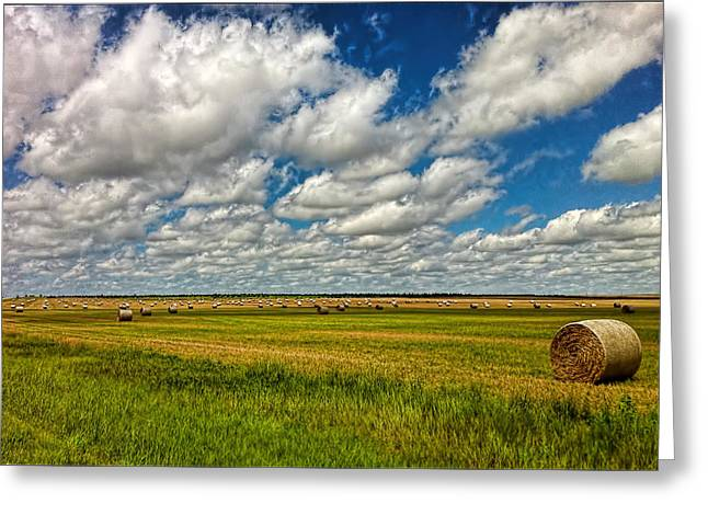 Nebraska Wheat Fields Greeting Card