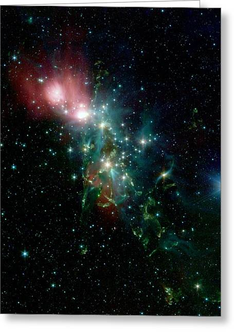 Nebula Ngc 1333 In The Constellation Perseus Greeting Card by American School