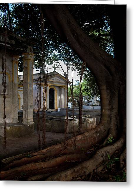Greeting Card featuring the photograph Necropolis Cristobal Colon Havana Cuba Cemetery by Charles Harden
