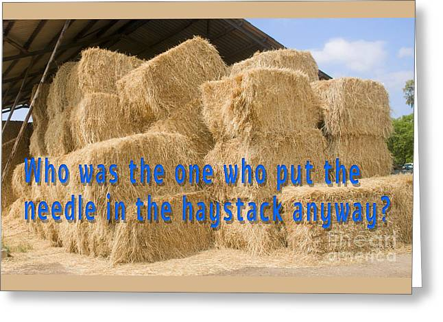 Needle In The Haystack Anyway? Greeting Card by Humorous Quotes