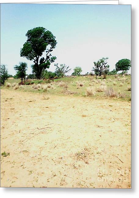 Neem Tree At Farm Greeting Card
