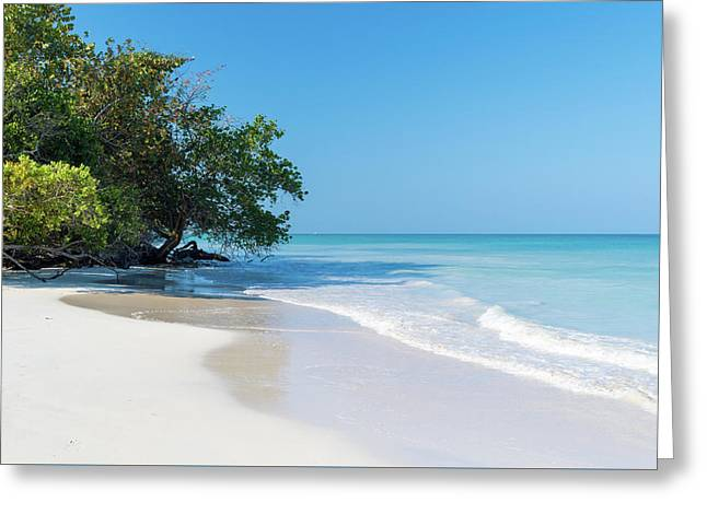 Negril Beach Morning Greeting Card