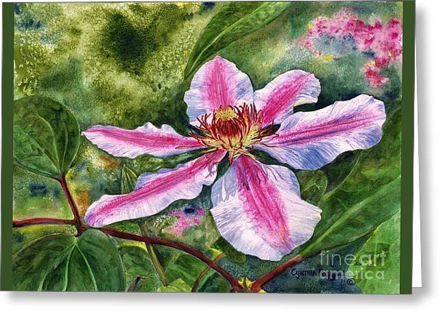 Nelly Moser Clematis Greeting Card