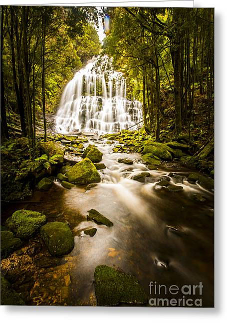 Nelson Falls Greeting Card by Jorgo Photography - Wall Art Gallery
