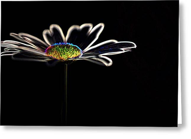 Neon Flower Greeting Card