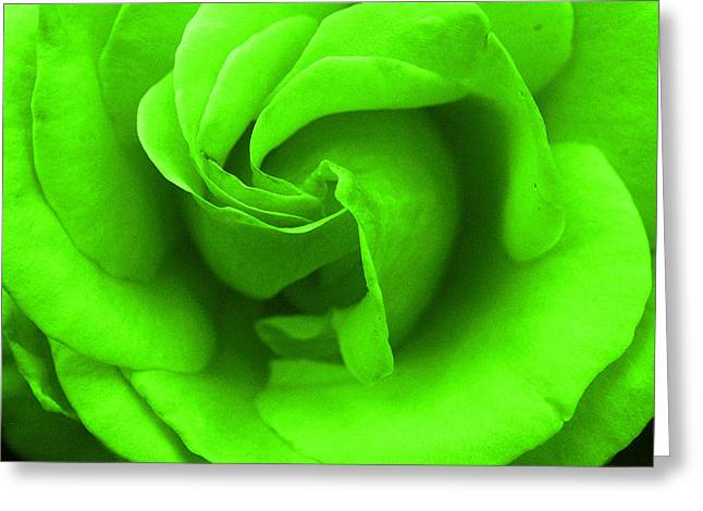 Neon Green Rose Greeting Card by Robyn Stacey