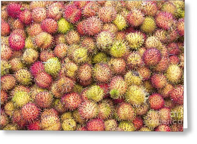 Nephelium Lappaceum Rambutan Fruit Greeting Card by D R