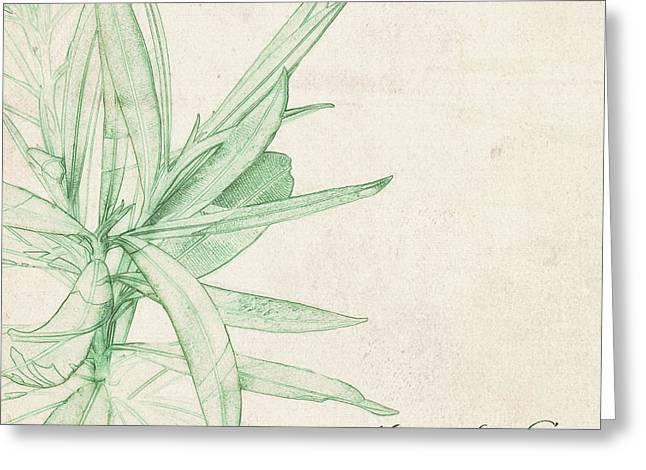 Nerium Oleander Greeting Card