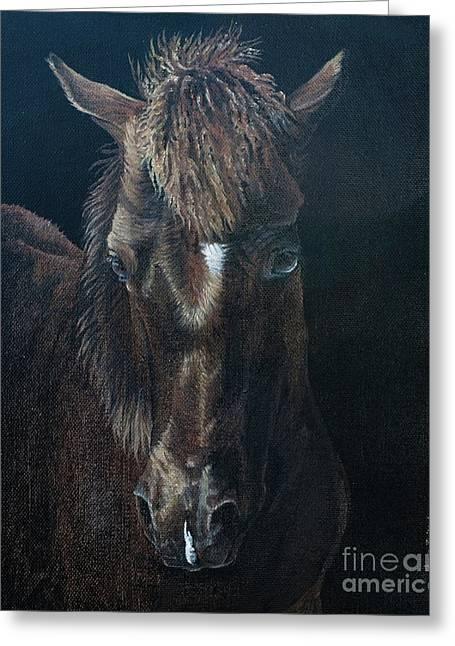 Nervous Colt  Milltown Fair Greeting Card by Pauline Sharp