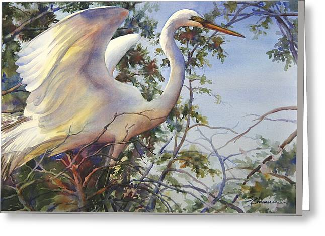 Nesting Egret Greeting Card by Sue Zimmermann