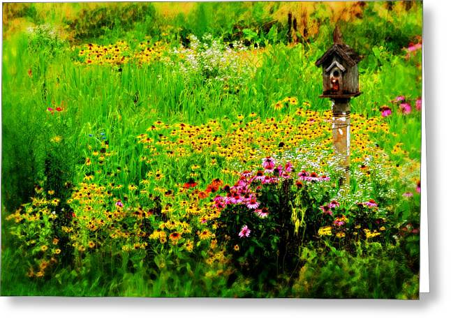 Nesting Place Greeting Card by Lyle  Huisken