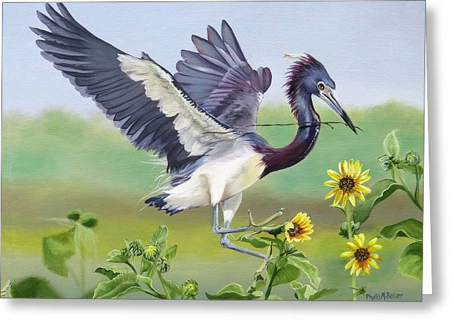Nesting Tri Colored Heron Greeting Card by Phyllis Beiser