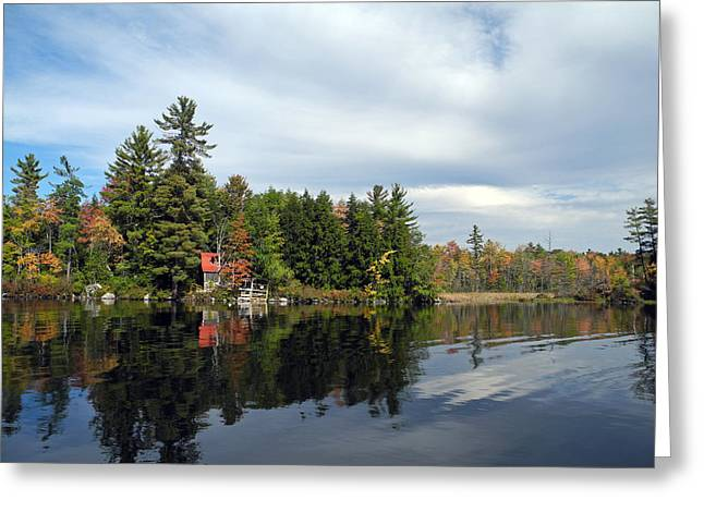 Nestled On The Far Shore Greeting Card by Lynda Lehmann