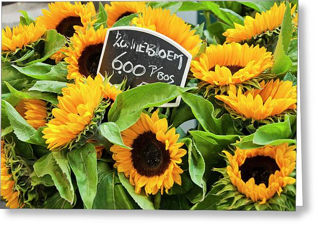 Amsterdam Market Greeting Cards - Netherlands Sunflowers Greeting Card by Joan Carroll