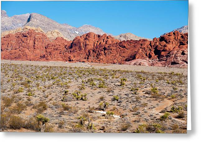 Nevada's Red Rocks Greeting Card by Rae Tucker