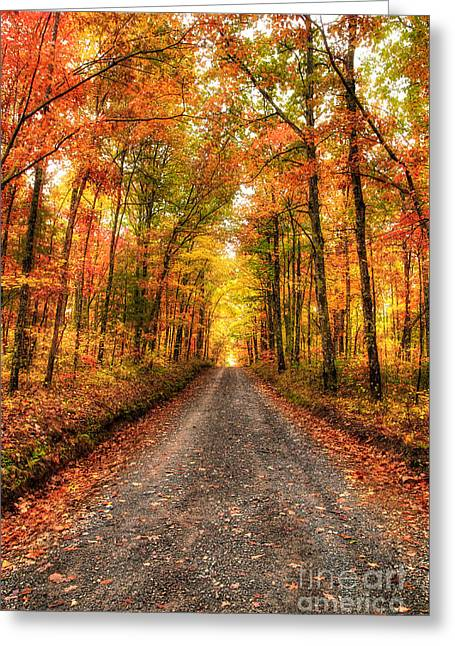 Never Ending Autumn Greeting Card by Dan Carmichael