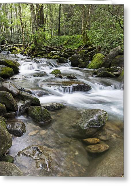 Never Stops Greeting Card by Jon Glaser