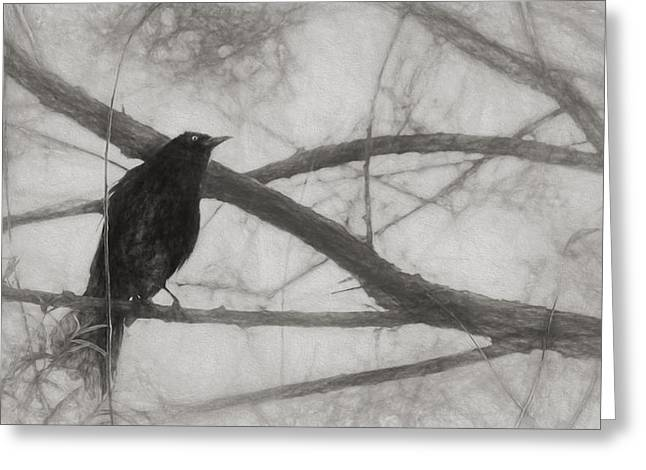 Nevermore Greeting Card by Melinda Wolverson