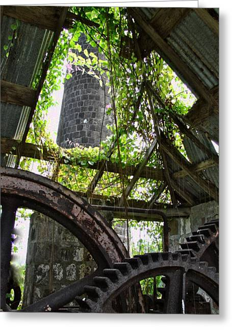 Nevis Sugar Mill Greeting Card by Louise Fahy
