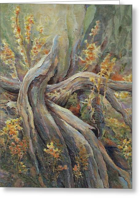 New Beginnings Greeting Card by Don Trout