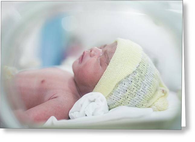 New Born Baby In Hospital After Delivery Hold In Oven Greeting Card