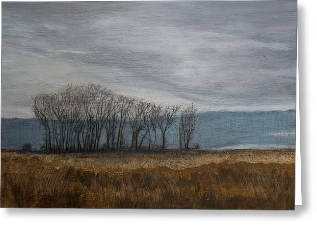 New Buffalo Marsh Greeting Card by John Hansen