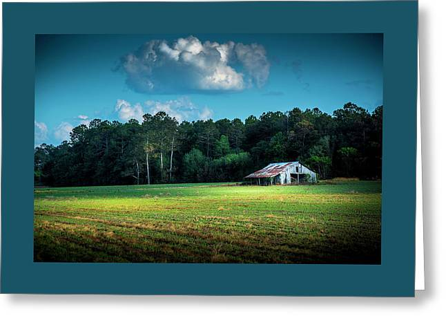 New Crops Greeting Card by Marvin Spates