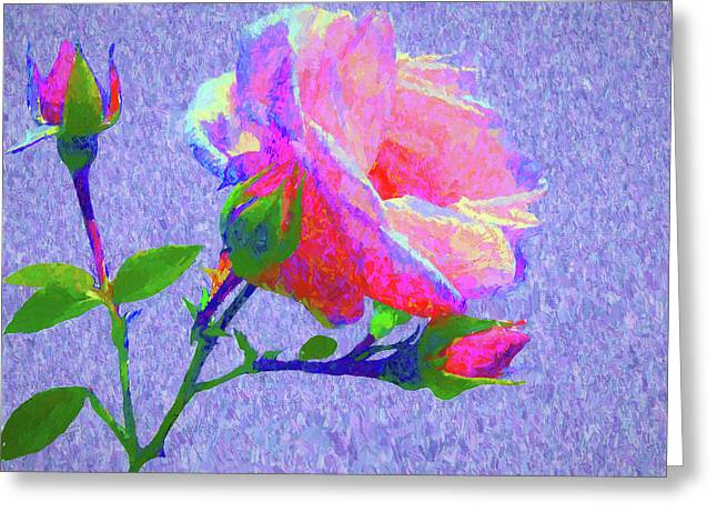New Dawn Painterly Greeting Card by Susan Lafleur