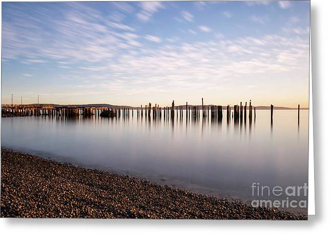 New Day In The Bay Greeting Card