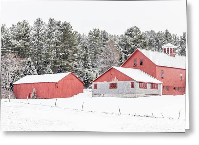 New England Farm With Red Barns In Winter Greeting Card