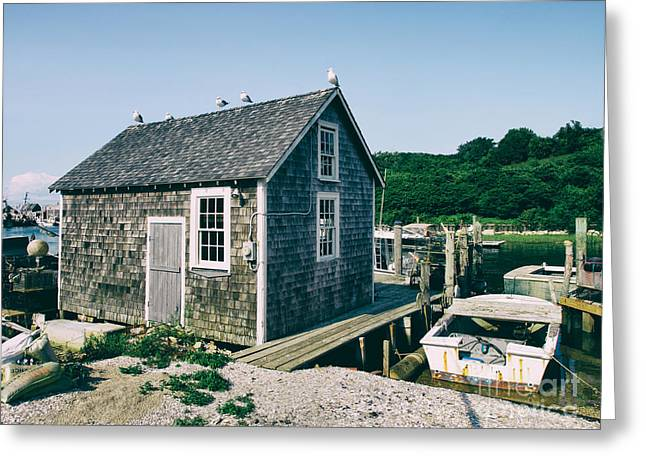 New England Fishing Cabin Greeting Card by Mark Miller