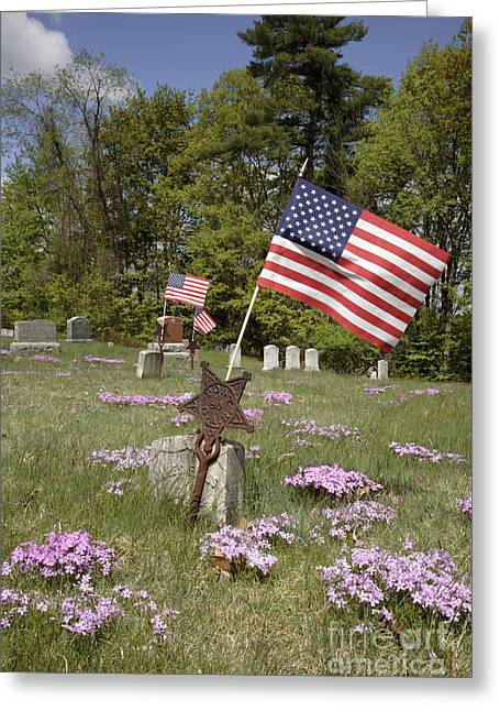 New England Graveyard Greeting Card by Erin Paul Donovan